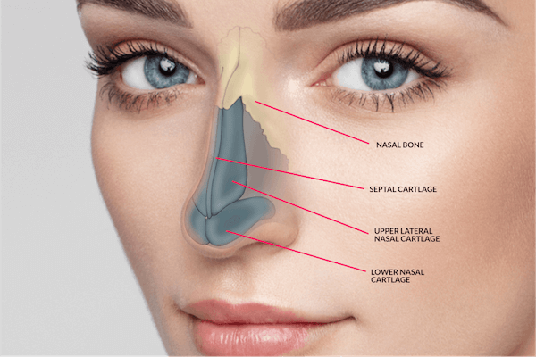 Rhinoplasty Cost USA